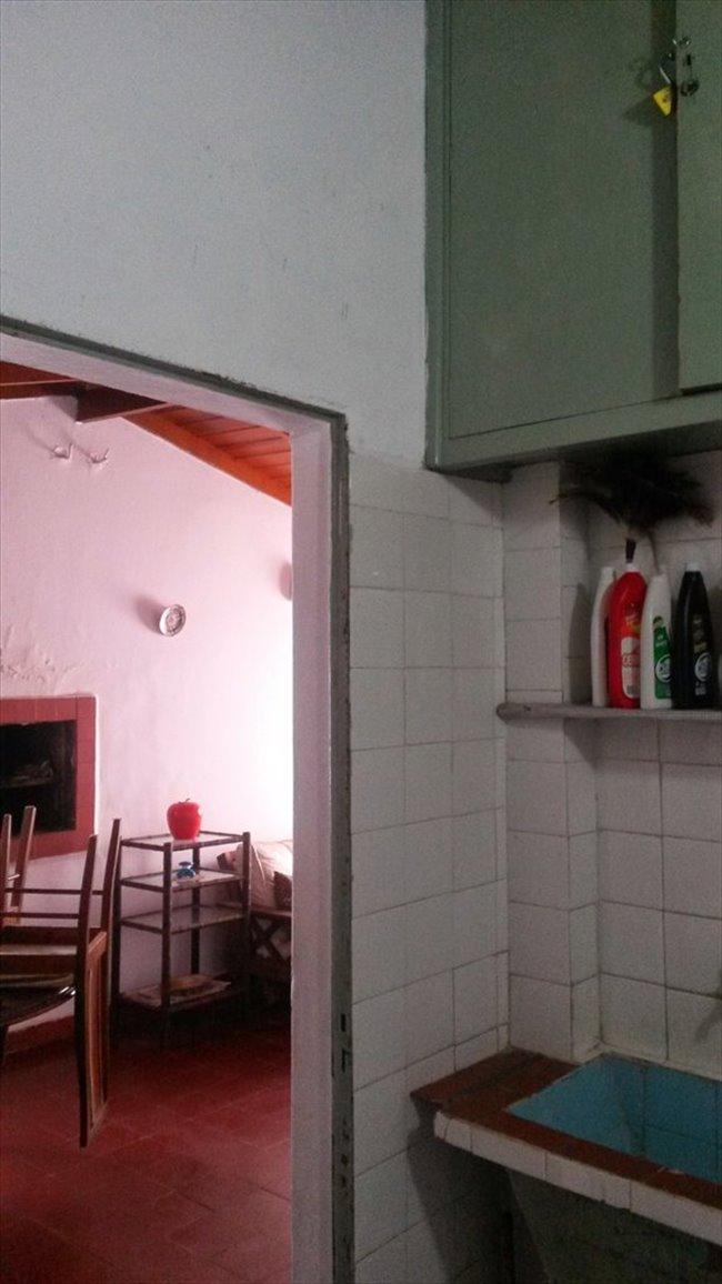 Habitacion en alquiler en Mar del Plata - LINDA CASITA EN MARDEL | CompartoDepto - Image 4