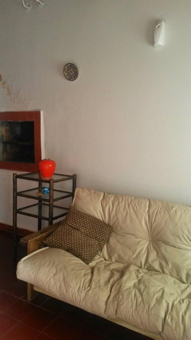 Habitacion en alquiler en Mar del Plata - LINDA CASITA EN MARDEL | CompartoDepto - Image 5