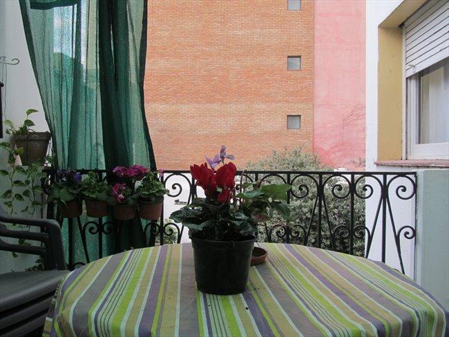 Habitaciones en alquiler - Córdoba - Alquilo habitacion en zona centrica | CompartoDepto - Image 4