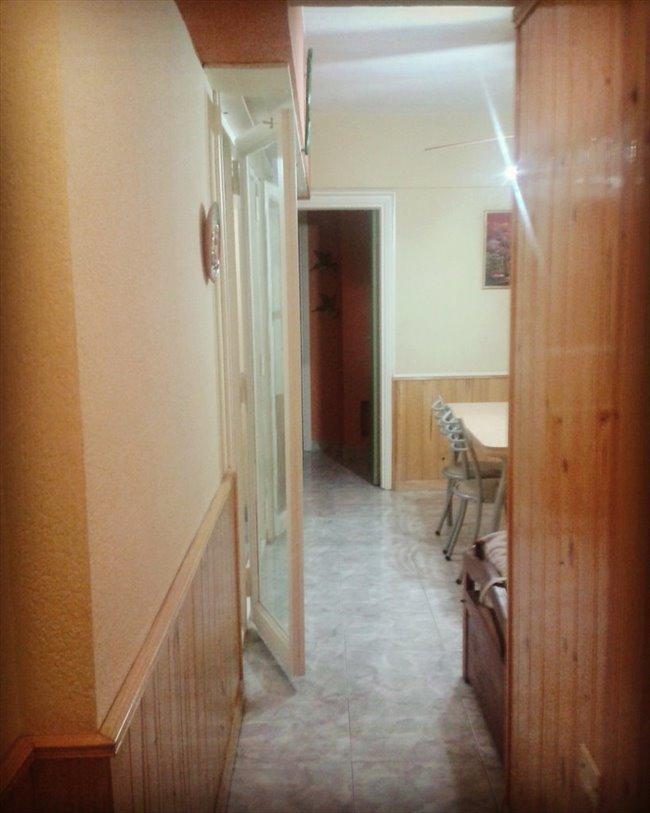 Habitacion en alquiler en Mar del Plata - Alquilo cama individual en sala habilitada | CompartoDepto - Image 6
