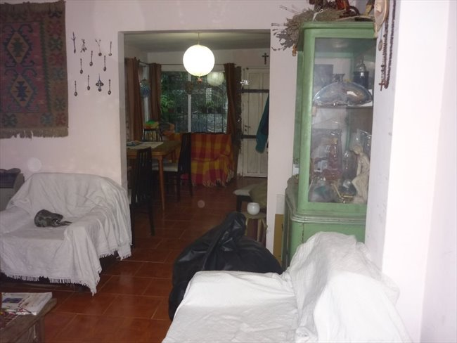 Habitacion en alquiler en Mar del Plata - habitaciones en casa de familia con mucha paz, tranquilidad y buena onda | CompartoDepto - Image 2