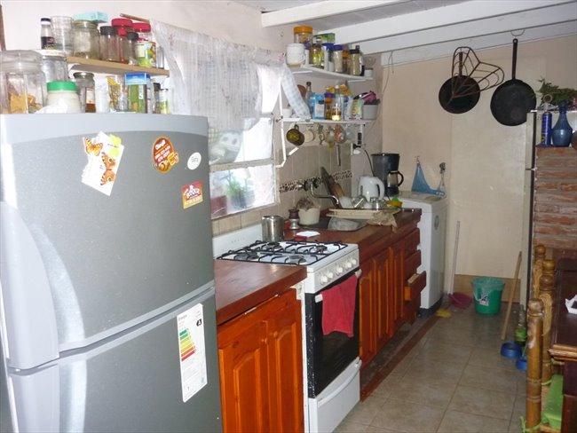 Habitacion en alquiler en Mar del Plata - habitaciones en casa de familia con mucha paz, tranquilidad y buena onda | CompartoDepto - Image 3