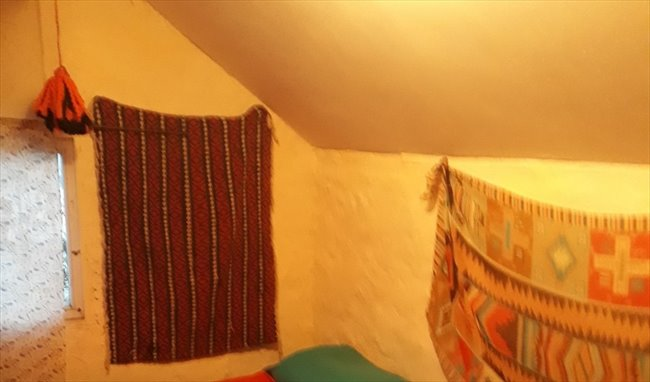 Habitacion en alquiler en Mar del Plata - habitaciones en casa de familia con mucha paz, tranquilidad y buena onda | CompartoDepto - Image 6