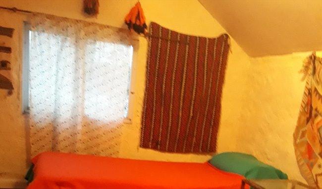 Habitacion en alquiler en Mar del Plata - habitaciones en casa de familia con mucha paz, tranquilidad y buena onda | CompartoDepto - Image 8