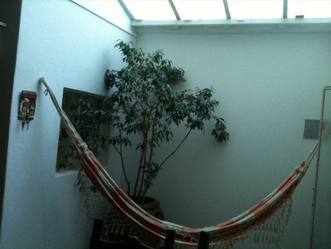 Habitaciones en alquiler - Capital Federal - A  RESIDENCIA ESTUDIANTIL BUENOS AIRES   CompartoDepto - Image 6