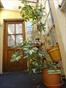 Habitaciones en alquiler - Capital Federal - Hermosa y gran habitacion naranja en plaza almagro | CompartoDepto - Image 5