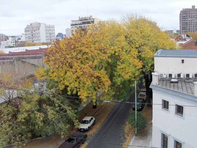 habitacion individual en  belgrano residencial - Belgrano - Image 4