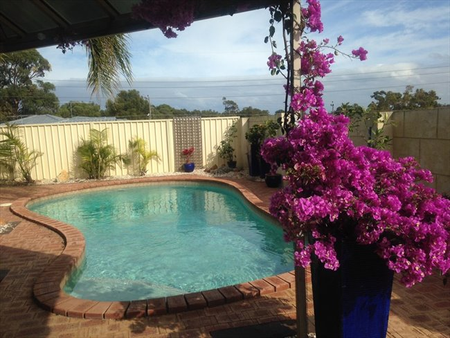 PADBURY - LARGE HOUSE WITH POOL! - Padbury, North West - Image 2