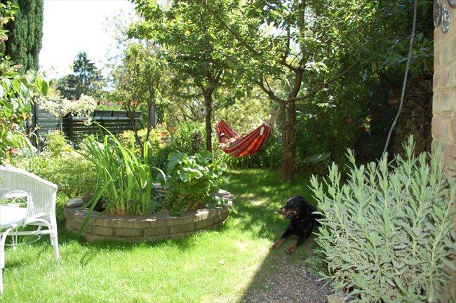 Colocation à Mons -  CHAMBRES  dans  maison située dans un grand parc. | Appartager - Image 1