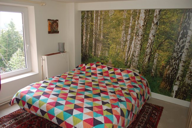 Colocation à Mons -  CHAMBRES  dans  maison située dans un grand parc. | Appartager - Image 3