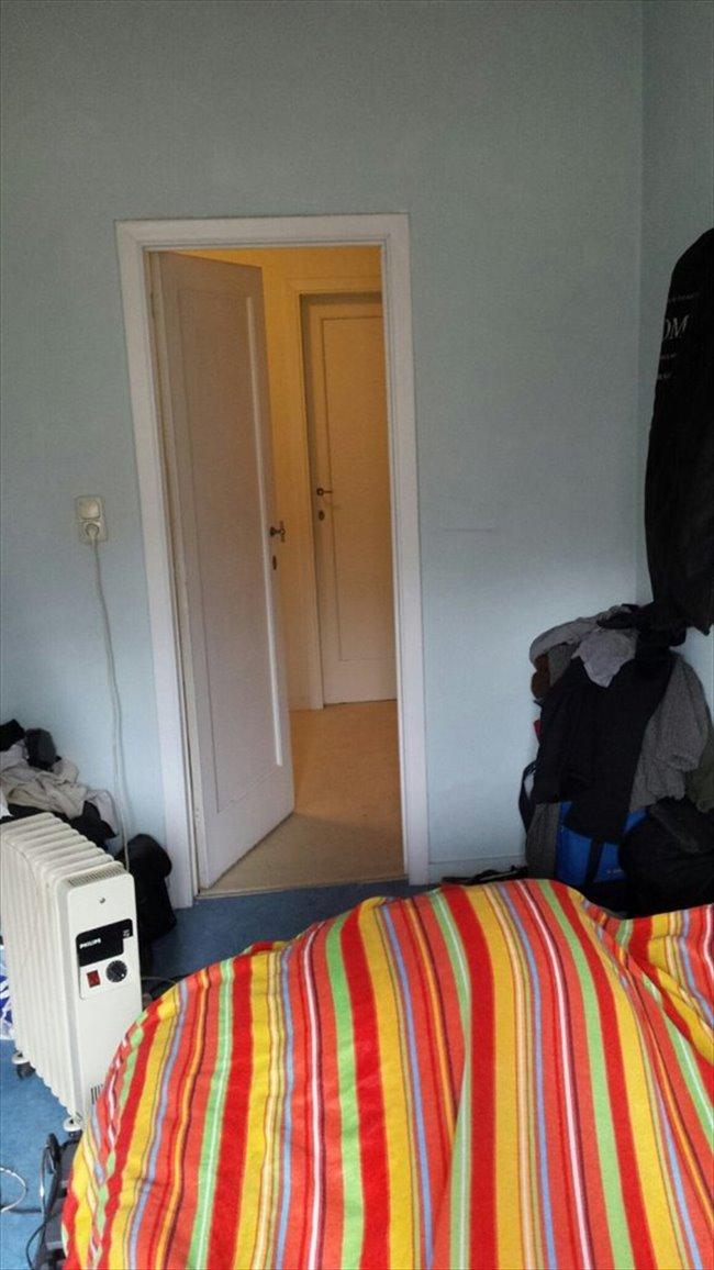 Colocation laeken location d 39 une chambre pour tudiant for Location de chambre pour etudiant