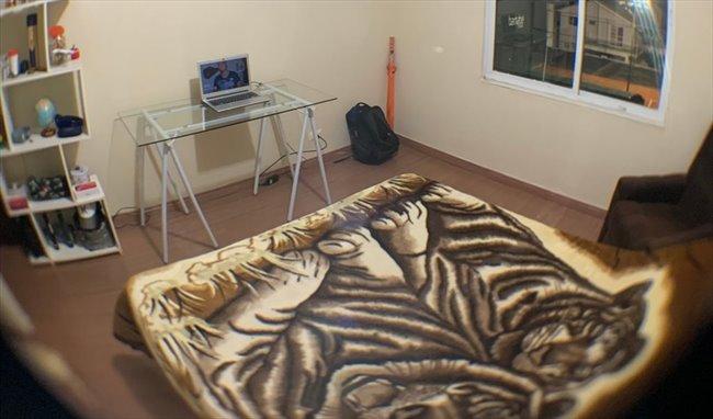 Aluguel kitnet e Quarto em Curitiba - Quarto disponível em APARTAMENTO NO ALTO DA XV   EasyQuarto - Image 7