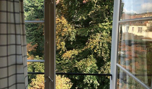 Colocation à Zürich - ZIMMER IN JUGENDSTYLVILLA   EasyWG - Image 3