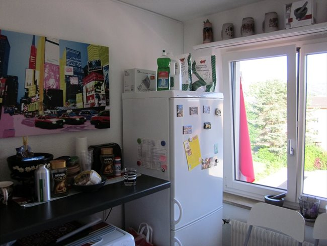 Colocation à Baden - Studio for rent in downtown 8953 Dietikon | EasyWG - Image 6