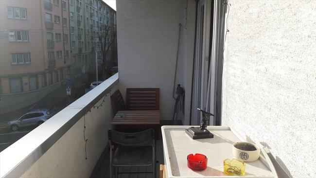 Colocation à Lausanne - Une chambre dans colocation au centre de Lausanne | EasyWG - Image 7