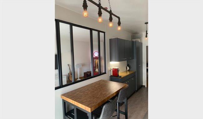 Spacieux appartement cherche coloc sympa - Lancy, Genève Périphérie - Image 3