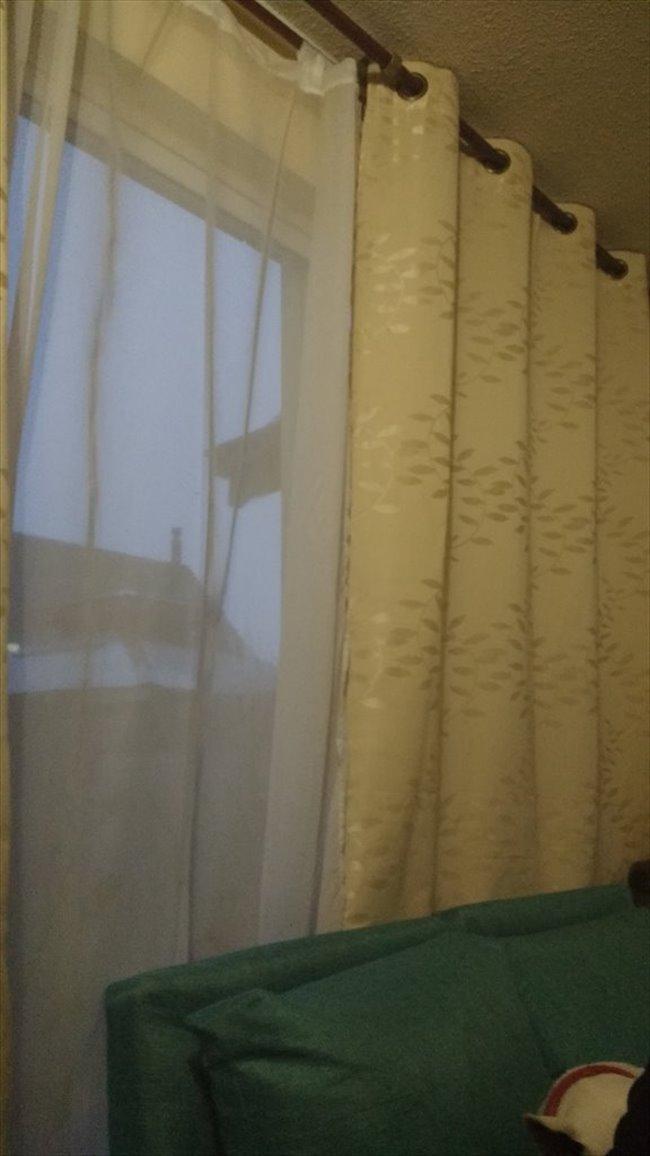 Piezas en Arriendo - Puerto Montt - Arriendo pieza con baño compartido | CompartoDepto - Image 1