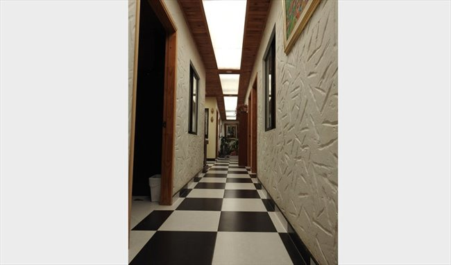 Habitaciones en arriendo - Bogotá - Habitaciones para universitarios ,extranjeros y viajeros | CompartoApto - Image 8