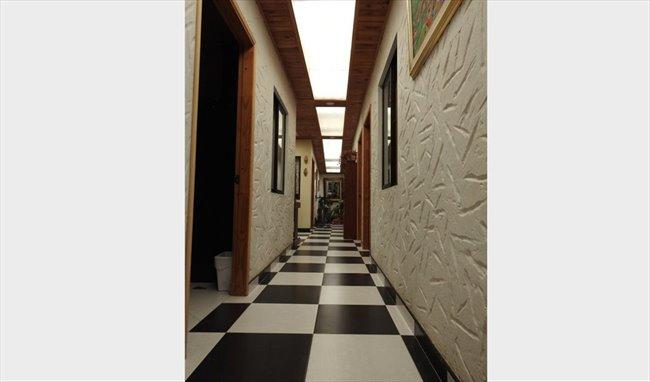 Habitacion en arriendo en Bogotá - Habitaciones para universitarios ,extranjeros y viajeros | CompartoApto - Image 8