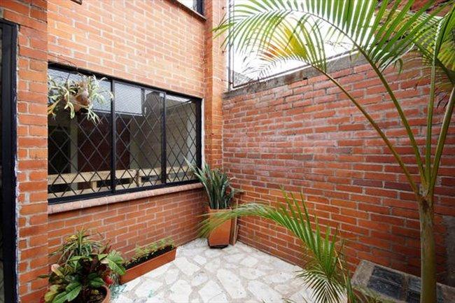 Habitacion en arriendo en Cali - 203 MCSA - Multi Cultural Shared Apartment | CompartoApto - Image 5