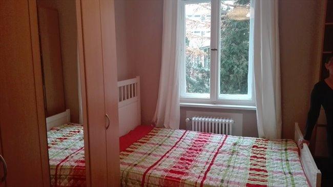 WG Zimmer - Berlin - Sonniges Zimmer in Charlottenburg zum Vermieten | EasyWG - Image 2