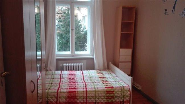 WG Zimmer - Berlin - Sonniges Zimmer in Charlottenburg zum Vermieten | EasyWG - Image 5