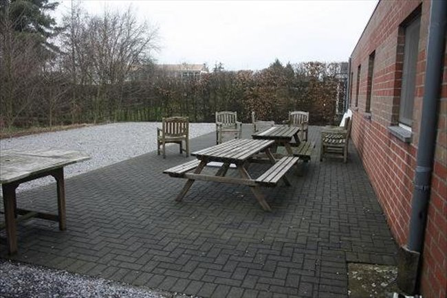Koten te huur in Hasselt - Studentenkamers academiejaar 2017/2018 Diepenbeek/Hasselt | EasyKot - Image 4
