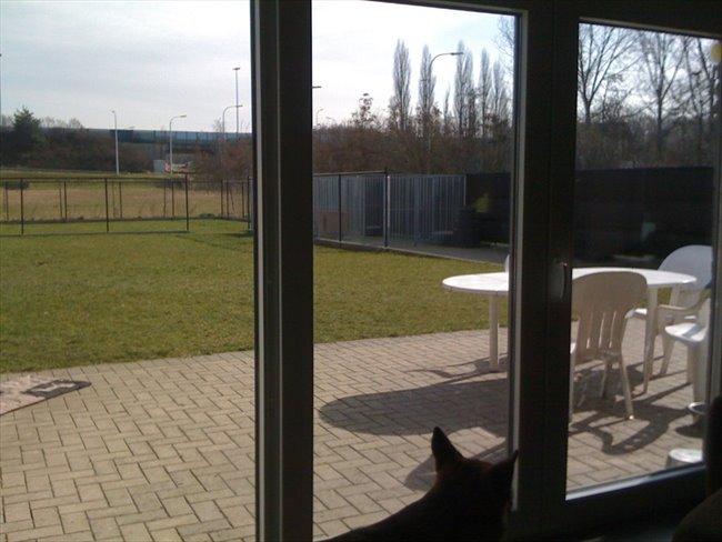 Koten te huur in Herent - Luxe kot niet ver van t station en gasthuisberg | EasyKot - Image 3