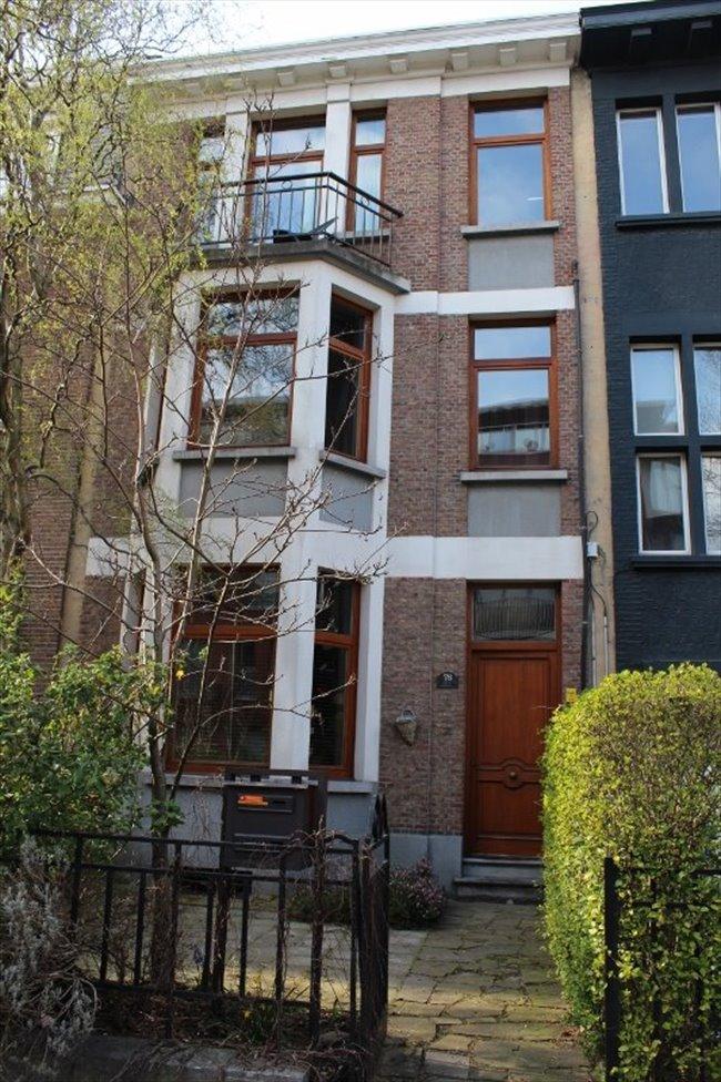 Koten te huur antwerpen anvers op kot in gerenoveerd herenhuis residentiele buurt easykot - Gerenoveerd herenhuis ...