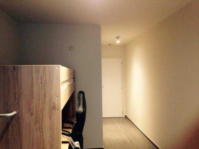 Badkamer Leuven : Koten te huur - Leuven-Louvain - Luxe studenten ...