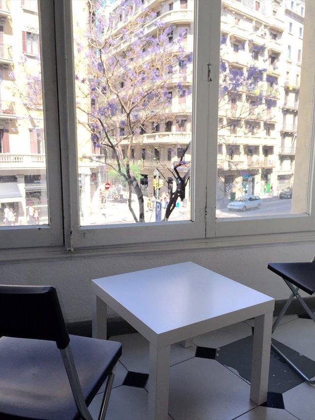 Piso Compartido en Barcelona - Habitación con cama DOBLE y BALCON en VIA LAIETANA!!!!! | EasyPiso - Image 4