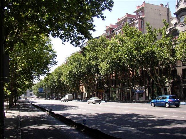 Nuevo Baño En Ciudad Real: en piso nuevo en el centro de Madrid – Centro Ciudad, Madrid Ciudad