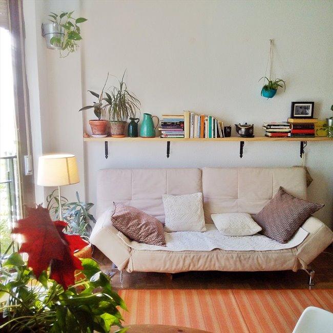 habitaciones centro madrid: