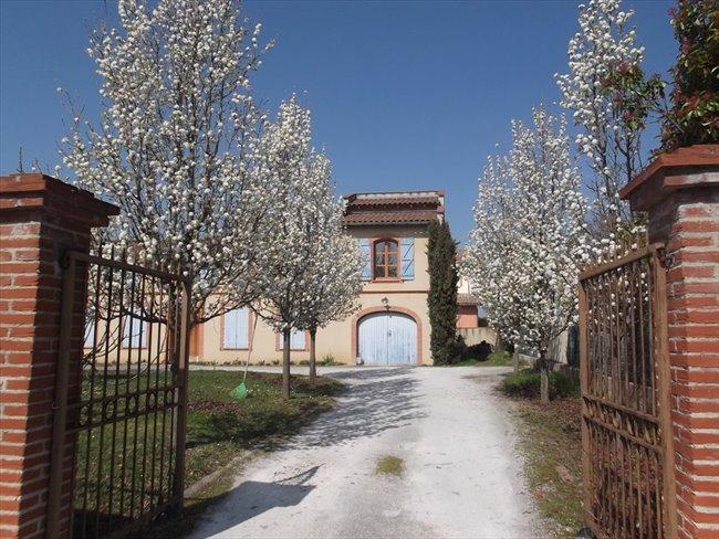 Colocation à Portet-sur-Garonne - Chambre chez l'habitant dans jolie maison avec jardin | Appartager - Image 5