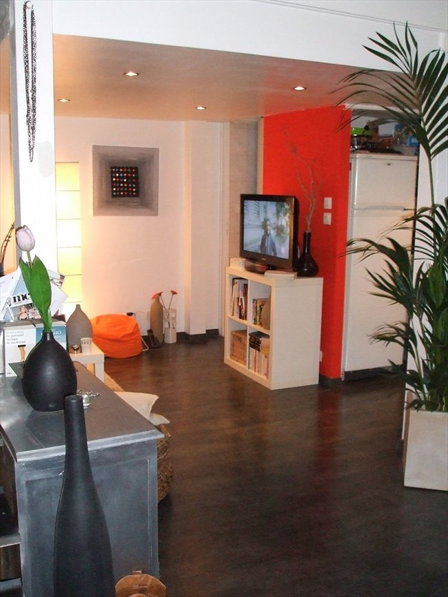 Colocation à Le Bouscat - Mini loft 45m2 | Appartager - Image 1