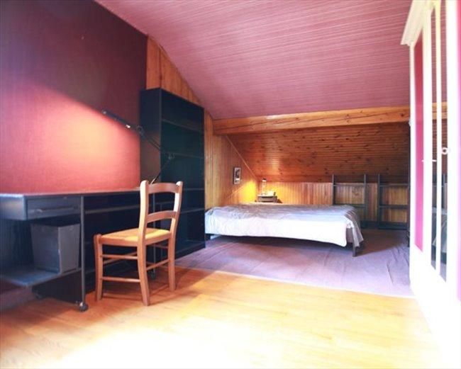 Colocation gaillard chambre 18 m2 louer dans for Chambre 18m2