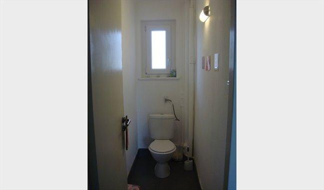 colocation strasbourg chambre meubl e strasbourg appartager. Black Bedroom Furniture Sets. Home Design Ideas