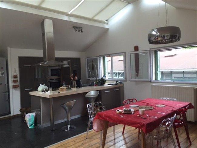 Colocation vincennes tr s belle chambre dans superbe loft d 39 architect - Colocation loft paris ...
