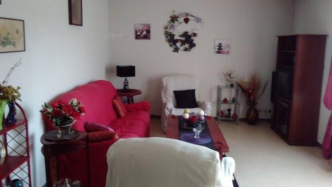 colocation montpellier femme seule sans enfant propose de partager en colocation mon appart. Black Bedroom Furniture Sets. Home Design Ideas