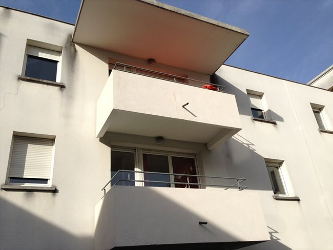 Colocation bordeaux tr s bel appartement chartrons for Appartement bordeaux chartrons location