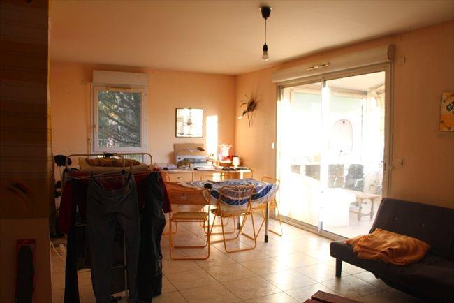 Colocation - Montpellier - Appartement T4, quartiers facultés | Appartager - Image 8
