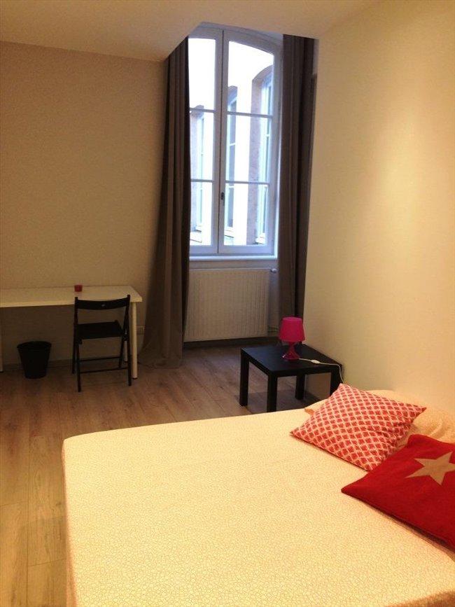 Colocation à Lyon - Superbe chambre dans appartement rénové | Appartager - Image 4