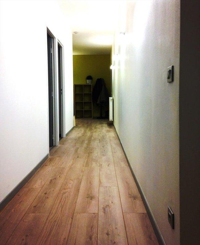 Colocation à Lyon - Superbe chambre dans appartement rénové | Appartager - Image 5