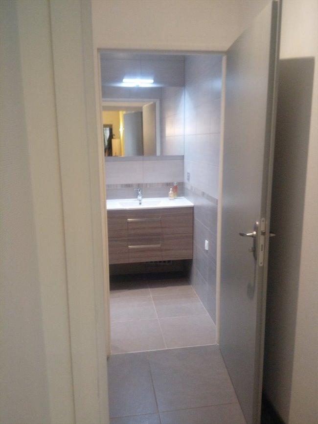 Colocation à Lyon - Superbe chambre dans appartement rénové | Appartager - Image 8