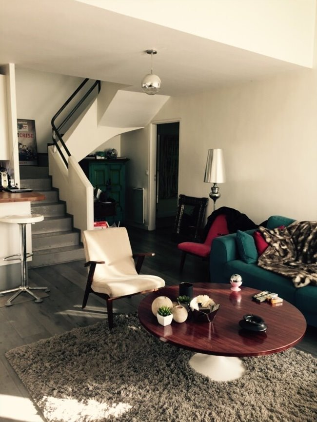 Colocation saint ouen appartement style loft duplex dans une all e priv e - Colocation loft paris ...