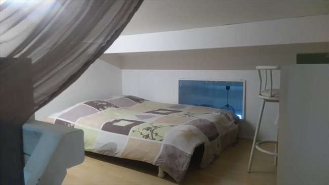 Colocation tarnos chambre en mezzanine disposition for Disposition des meubles dans une chambre