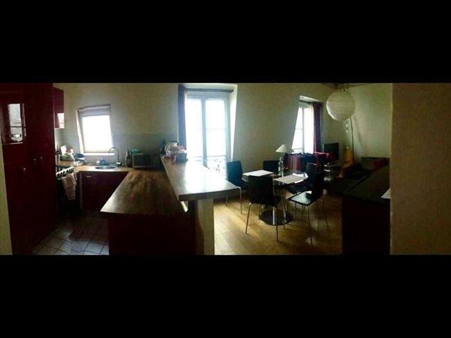 colocation 8 me arrondissement paris 8eme place dans super coloc appartager. Black Bedroom Furniture Sets. Home Design Ideas