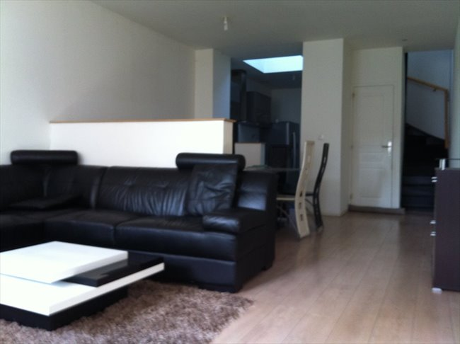 Colocation faches thumesnil maison lille 4 chambres 2 for Chambre a louer lille