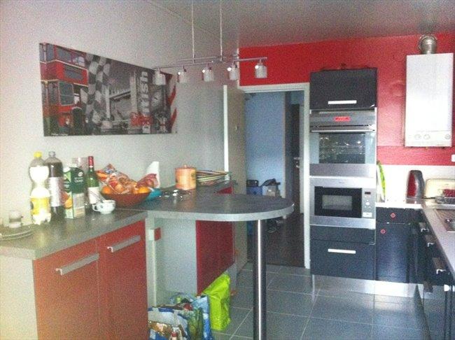 Colocation à Palaiseau (91) appartement 75m² - Palaiseau, Paris - Essonne - Image 2