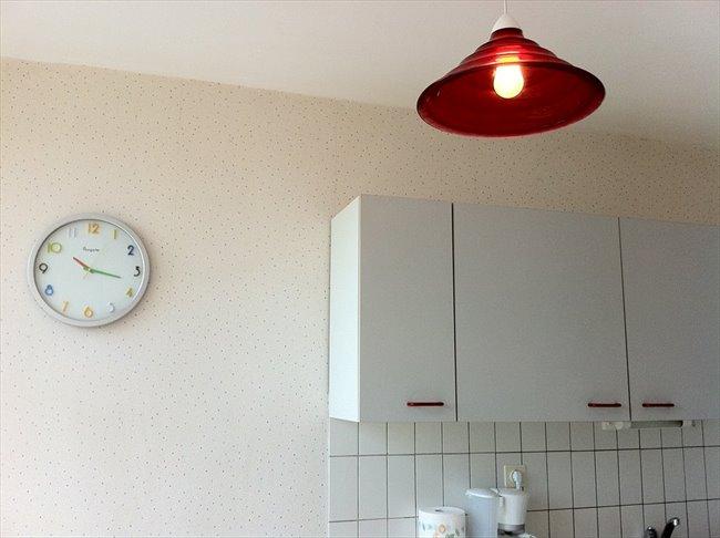 Loue T1 meublé et équipé tout confort en résidence - Le Havre - Image 4